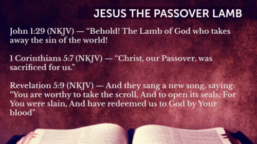 Three verses saying Lamb of God