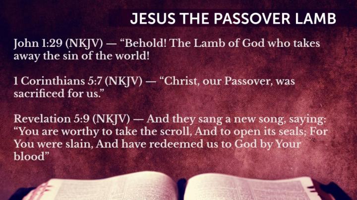 Three verses saying Lamb of God