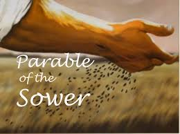 parable-of-the-sower