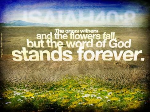 Isaiah 40 Word stands forever