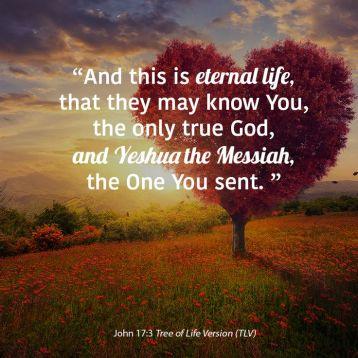 John 17 3