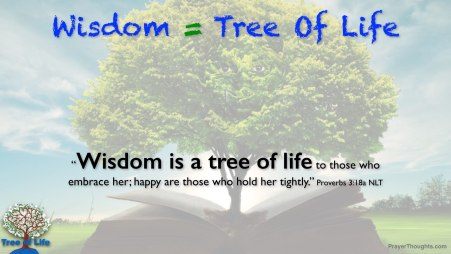 Proverbs.3.18a-Wisdom_Is_The_Tree_Of_Life
