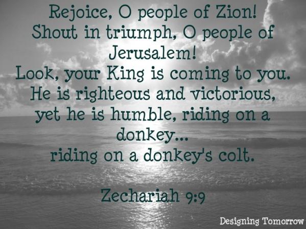 Zech 9 9
