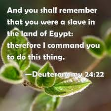 Image result for image of Deuteronomy 24:22