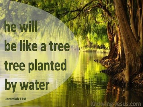Living Water Jeremiah